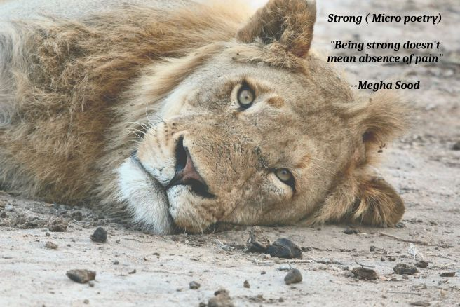 Strong_MP.jpg
