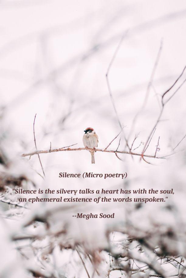 Silence_MP.jpg
