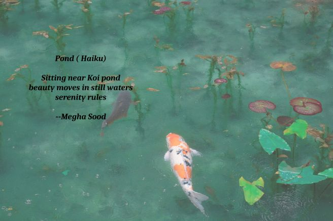 Pond_HK.jpg