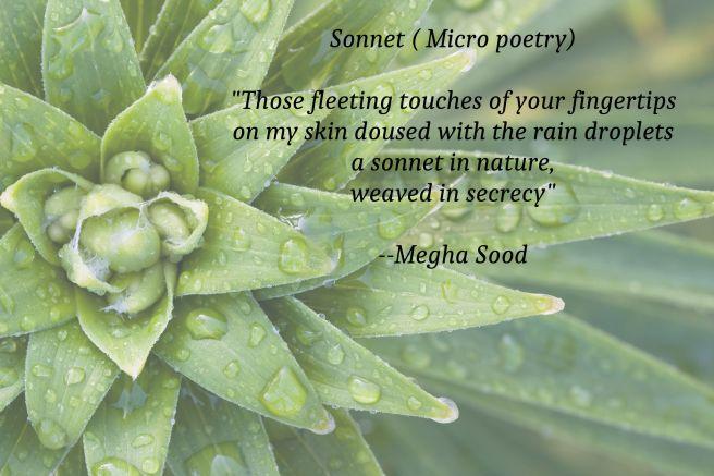 Sonnet_MP.jpg