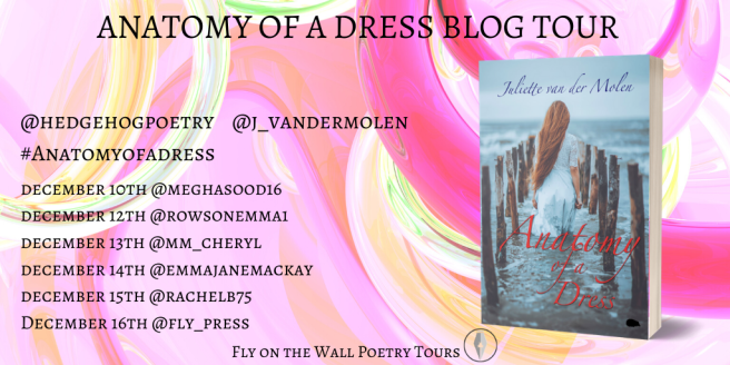 Anatomy of a Dress Blog Tour.png