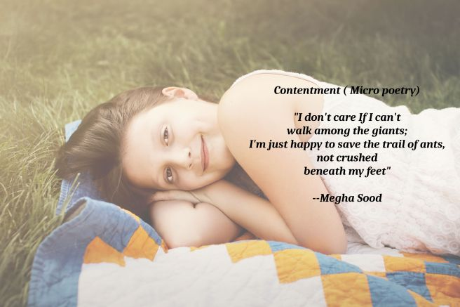 Contentment_MP