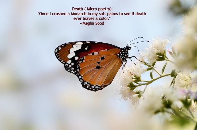 Death_MP