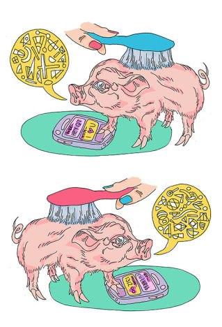 Double-Pig-Judy-moore-VV-Feb-2021-V2